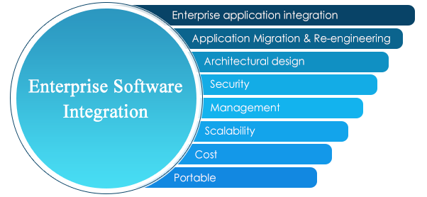 Enterprise Software Integration
